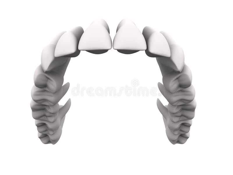 Download Upper teeth 1 stock illustration. Image of plaque, periodontal - 996417