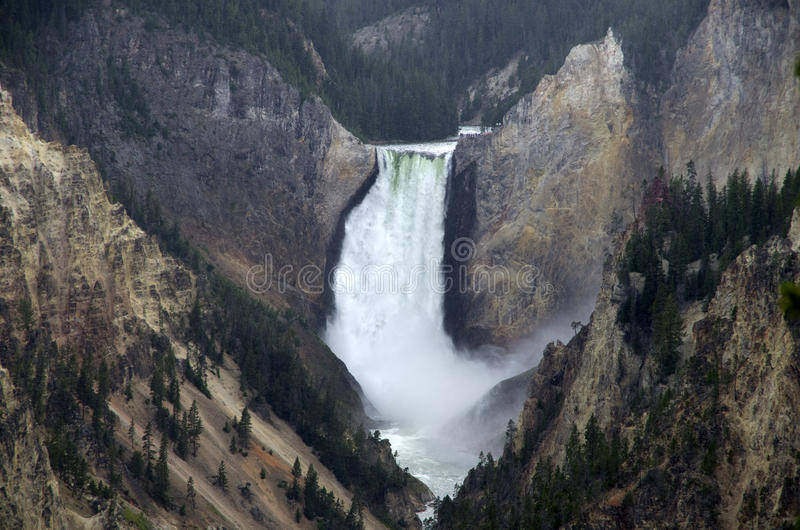 Upper Yellowstone Falls. Beautiful fall with high volume of water in Yellowstone canyon royalty free stock images