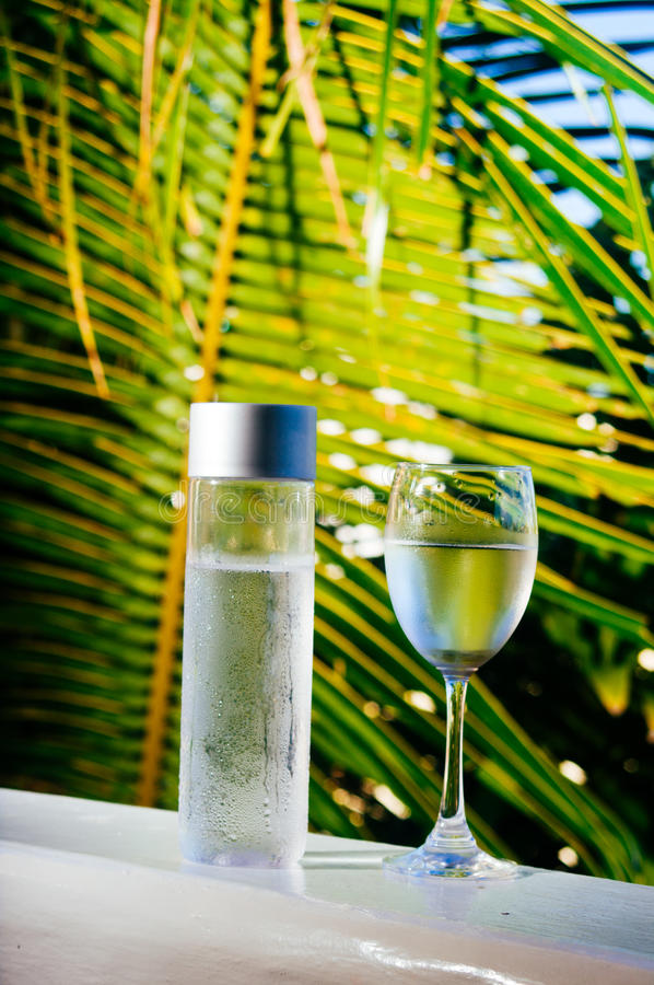 Uppfriskande drickbart kallt vatten i flaskan Kallt vatten med tropisk bakgrund arkivbild