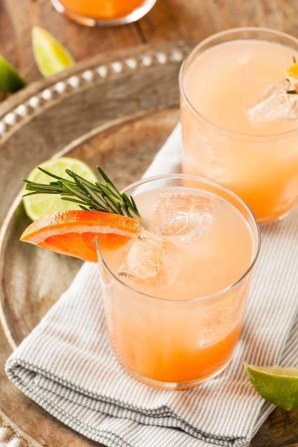 Uppfriskande grapefrukt och Tequila Palomas arkivbilder