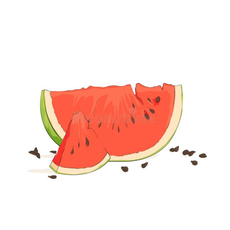 Uppfriskande vattenmelonstycken vektor illustrationer