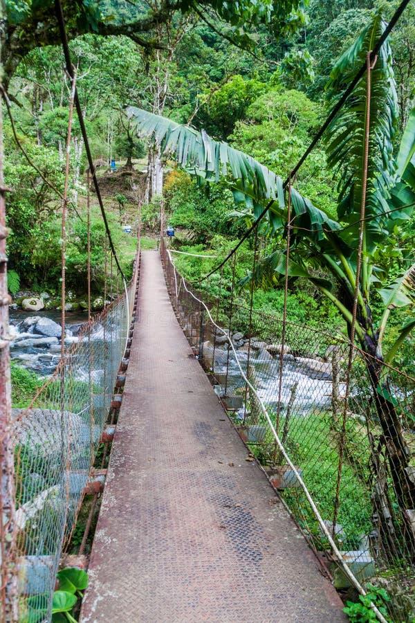 Upphängningbro över Calderafloden nära Boquete Panama, på Lost vattenfall som fotvandrar trai royaltyfria bilder