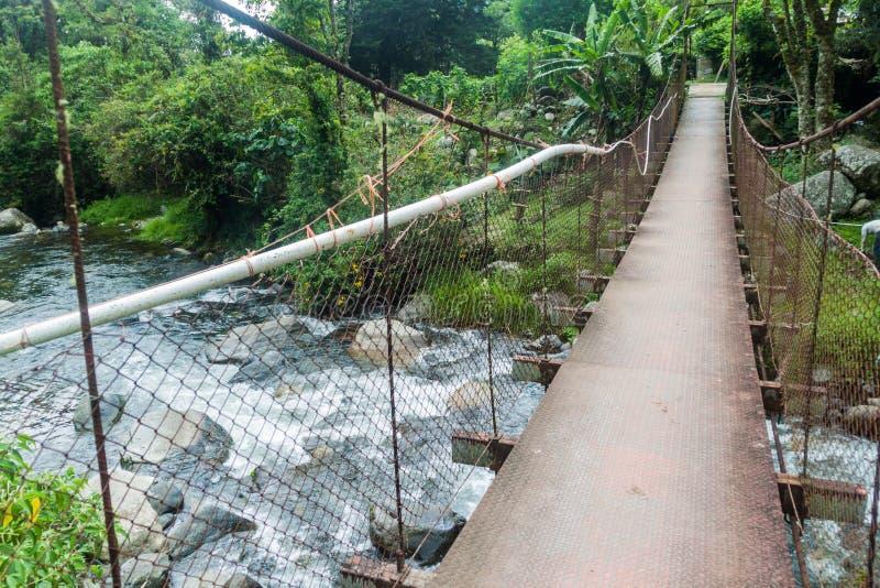 Upphängningbro över Calderafloden nära Boquete Panama, på Lost vattenfall som fotvandrar trai royaltyfria foton