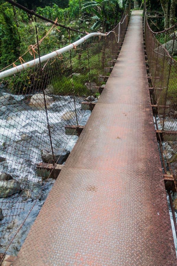 Upphängningbro över Calderafloden nära Boquete Panama, på Lost vattenfall som fotvandrar trai royaltyfri fotografi