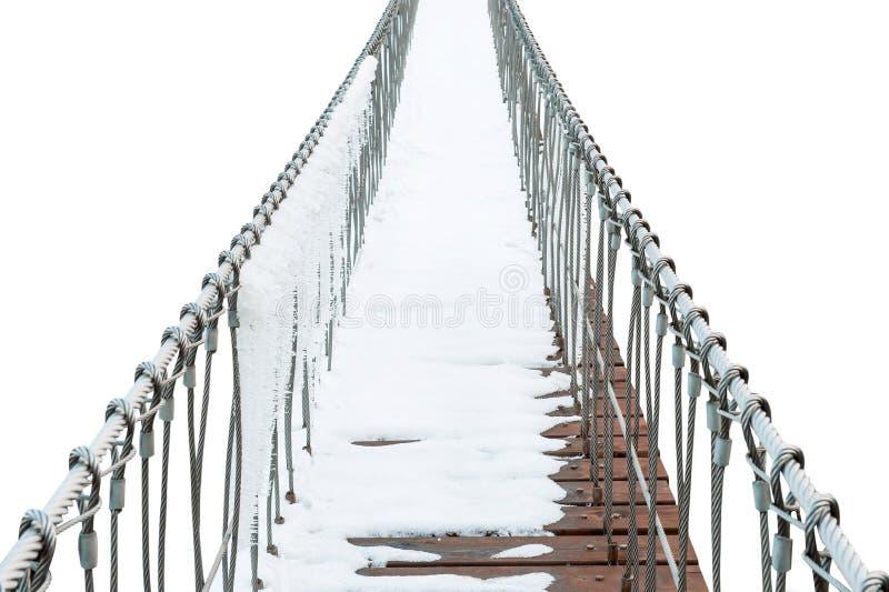 Upphängningbro av järnkedjan och trän i vinter royaltyfri fotografi
