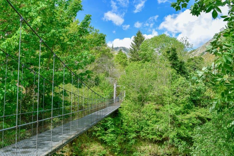 Upphängningbro i omsorger som Trekking rutten royaltyfri foto