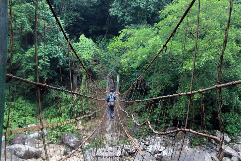 Upphängningbro till och med tropiska Indien royaltyfria bilder
