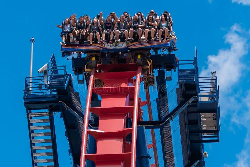 Upphetsade framsidor av folk som enyoing en Sheikra rollercoasterritt på Busch trädgårdnöjesfält 11 royaltyfri fotografi