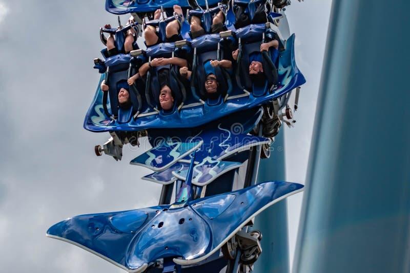 Upphetsade framsidor av folk som har den roliga MantaRay rollercoasteren på Seaworld 10 royaltyfri fotografi