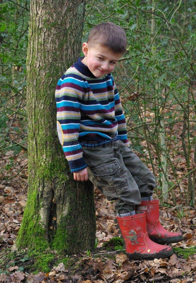 uppnosig pojke royaltyfri fotografi
