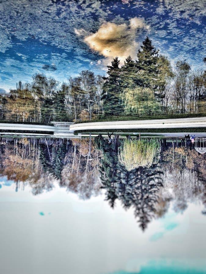 Uppochnervänd reflexion royaltyfri fotografi