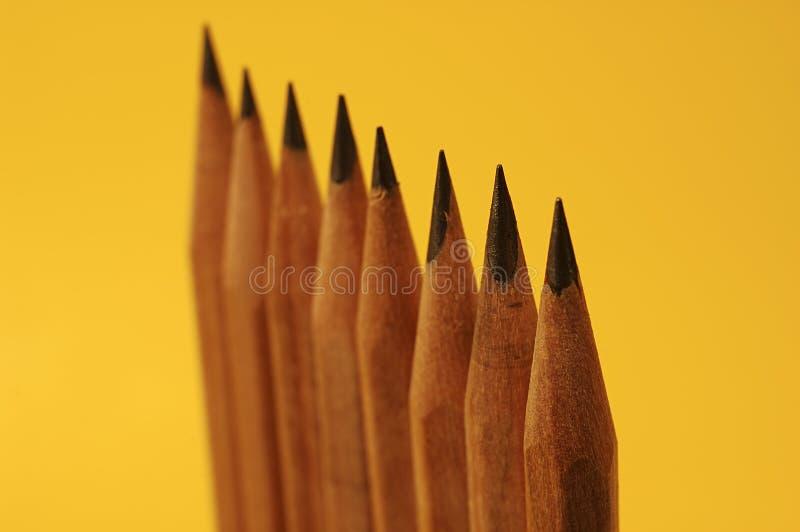 upprätta blyertspennor fotografering för bildbyråer