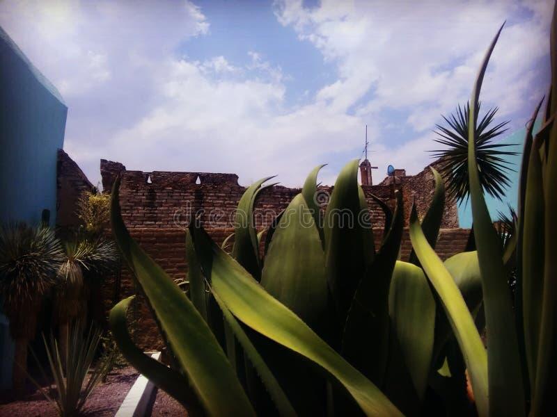 Upproriskhetmuseum i Hidalgopaviljongen, Aguascalientes, Mexico royaltyfri foto