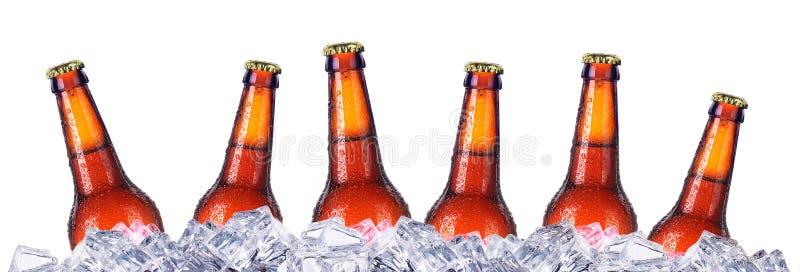 Uppsättning av öls flaskor med frostiga droppar i is arkivfoto