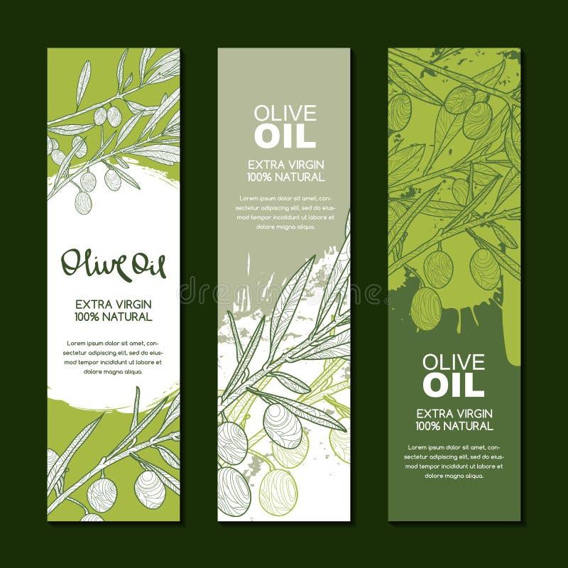 Uppsättning av bakgrunder för etiketten, packe Illustration av den olivgröna filialen Jordbruk, olivolja och skönhetsmedelpacke royaltyfri illustrationer