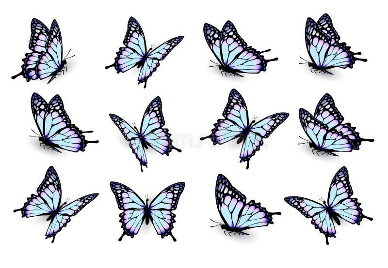 Uppsättning av blåa fjärilar som flyger i olika riktningar royaltyfri illustrationer