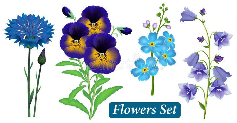 Uppsättning av blåa lösa blommor på en vit bakgrund, vektor vektor illustrationer