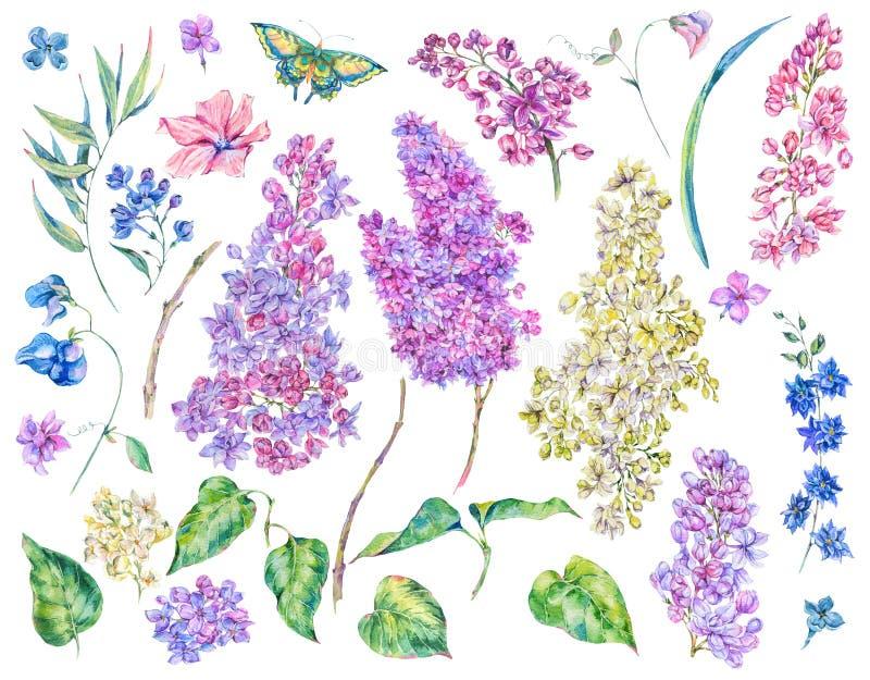 Uppsättning av blom- beståndsdelar för vattenfärgvårnatur stock illustrationer