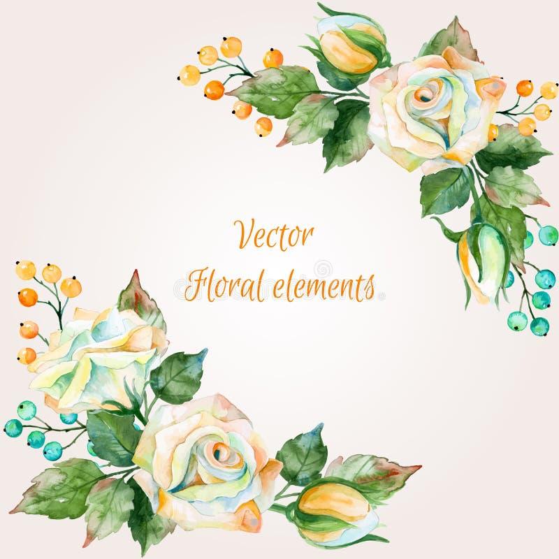 Uppsättning av blom- buketter för vattenfärg för design Illustration av vita rosor