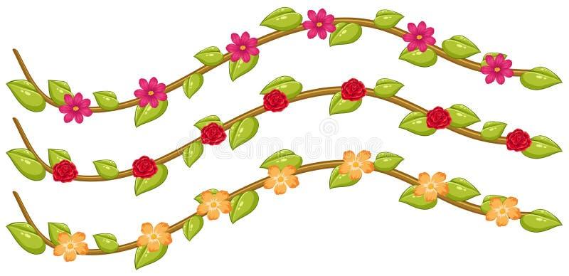 Uppsättning av blommavinrankor royaltyfri illustrationer