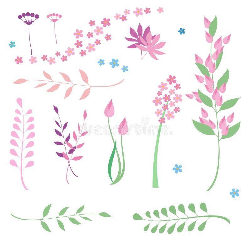 Uppsättning av blommor och örter stock illustrationer