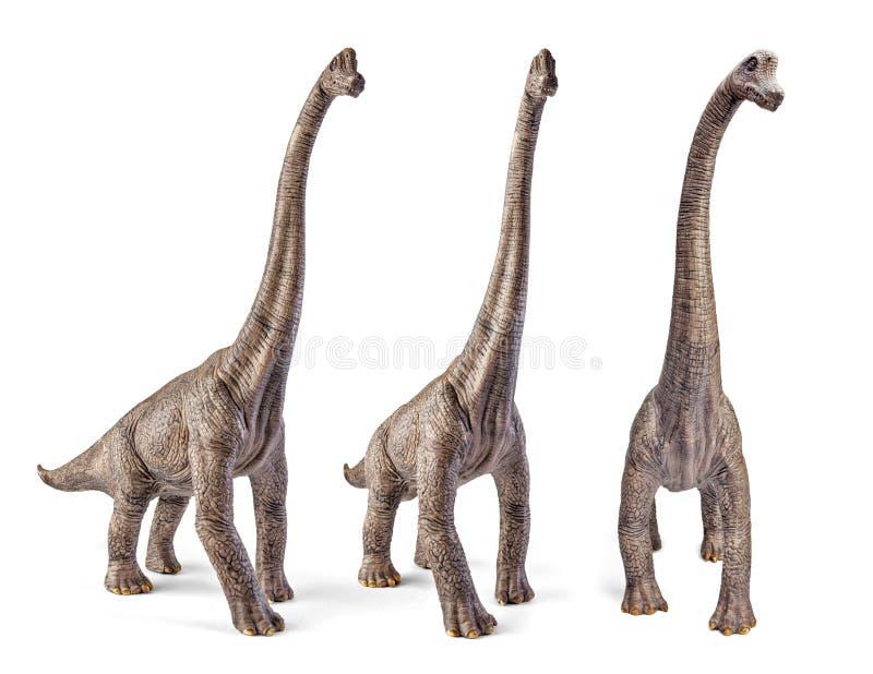Uppsättning av brachiosaurusen, dinosaurieleksak som isoleras på vit bakgrund med den snabba banan fotografering för bildbyråer