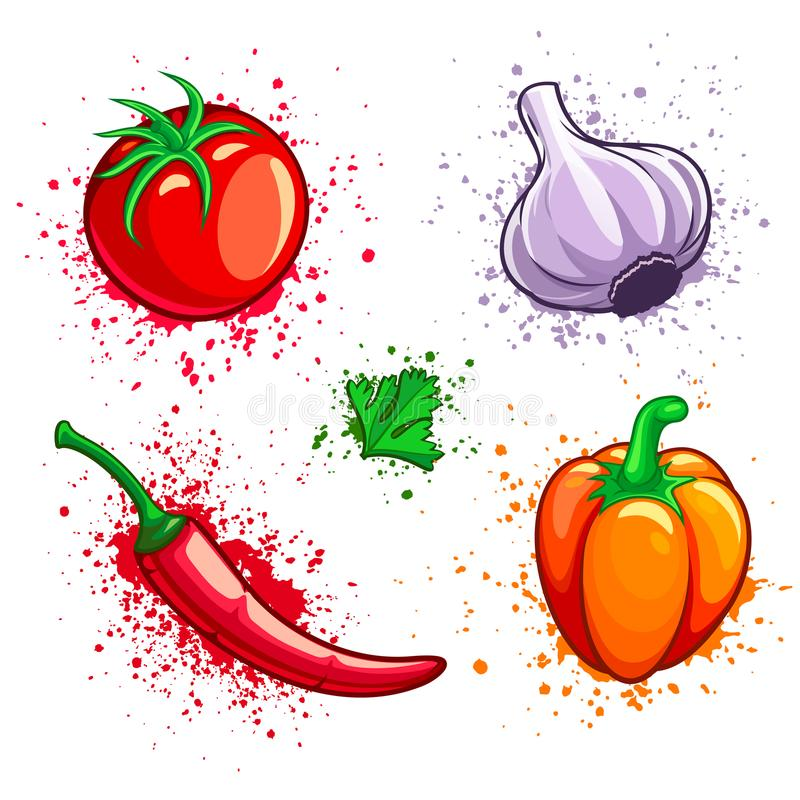 Uppsättning av chili och persilja för vitlök för peppar för körsbärsröd tomat för nya grönsaker stock illustrationer