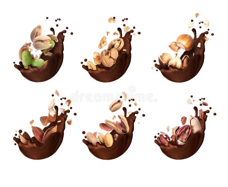 Uppsättning av chokladfärgstänk med den olika krossade muttercloseupen som isoleras på en vit bakgrund royaltyfria foton
