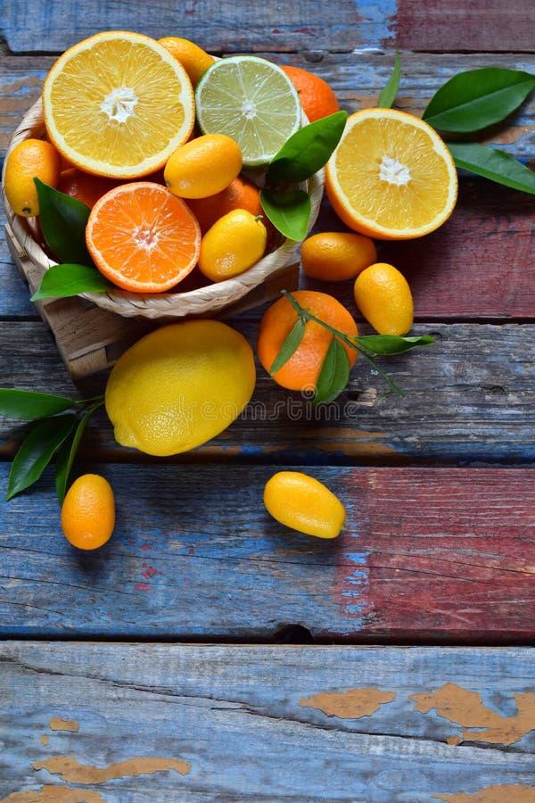Uppsättning av citruns på träbakgrund: apelsin mandarin, citron, grapefrukt, limefrukt, kumquat, tangerin Nya organiska saftiga f royaltyfria bilder