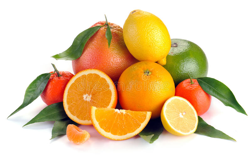 Uppsättning av citrusfrukt med sidor arkivbilder