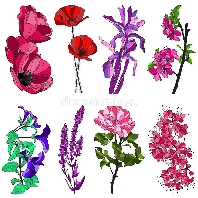 Uppsättning av dekorativa blommor stock illustrationer
