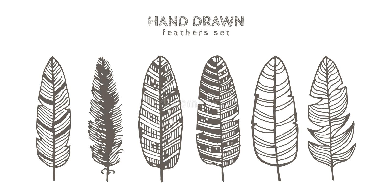 Uppsättning av dekorativa djurfjädrar Färgpulverillustration bakgrund isolerad white Hand dragen vektorkonst stock illustrationer
