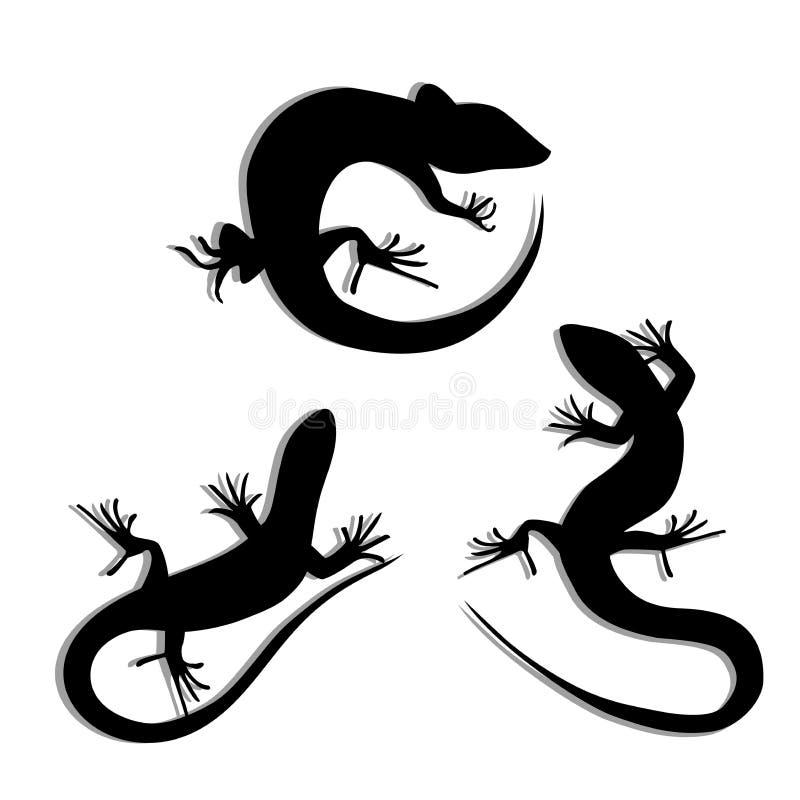 Uppsättning av den härliga monokromma ödlan, ödlakonturer Salamandrakonturer Geckokonturer stock illustrationer