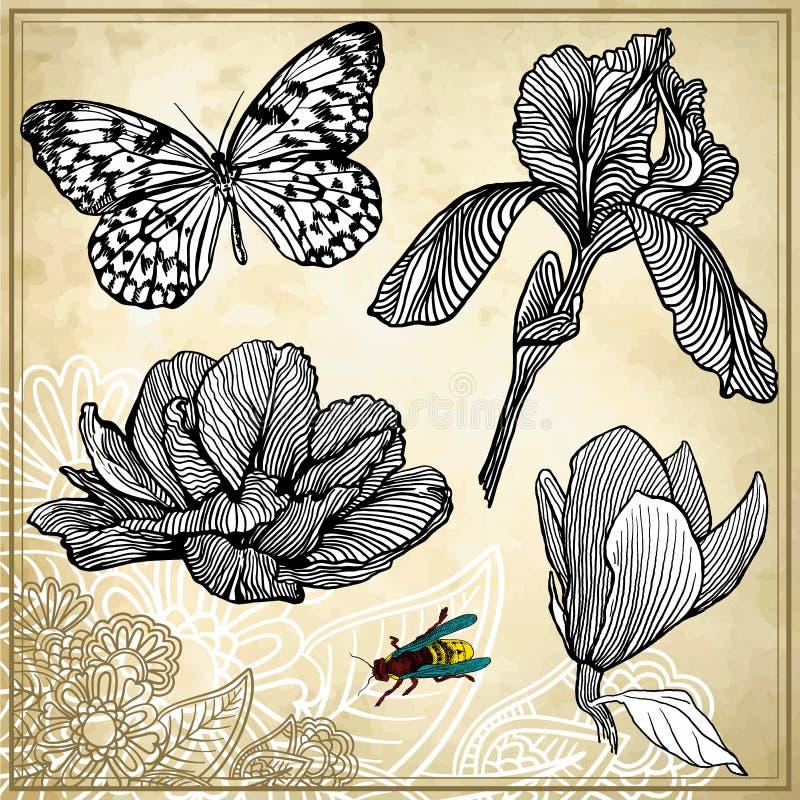 Uppsättning av den handteckningsblomman och fjärilen stock illustrationer