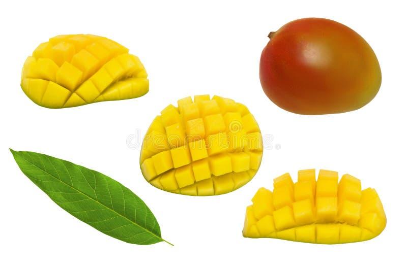 Uppsättning av den hela mango, det halva mangokubsnittet och bladet som isoleras på vit bakgrund royaltyfri bild