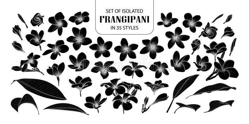 Uppsättning av den isolerade konturfrangipanien i 35 stilar stock illustrationer