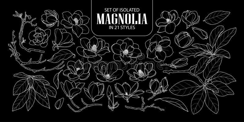 Uppsättning av den isolerade magnolian i 21 stilar Gullig hand dragen vit översikt för blommavektorillustration endast royaltyfri illustrationer
