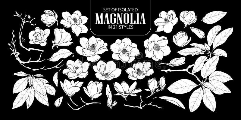 Uppsättning av den isolerade vita konturmagnolian i 21 stilar Gullig hand dragen blommavektorillustration i den vita nivån och in royaltyfri illustrationer