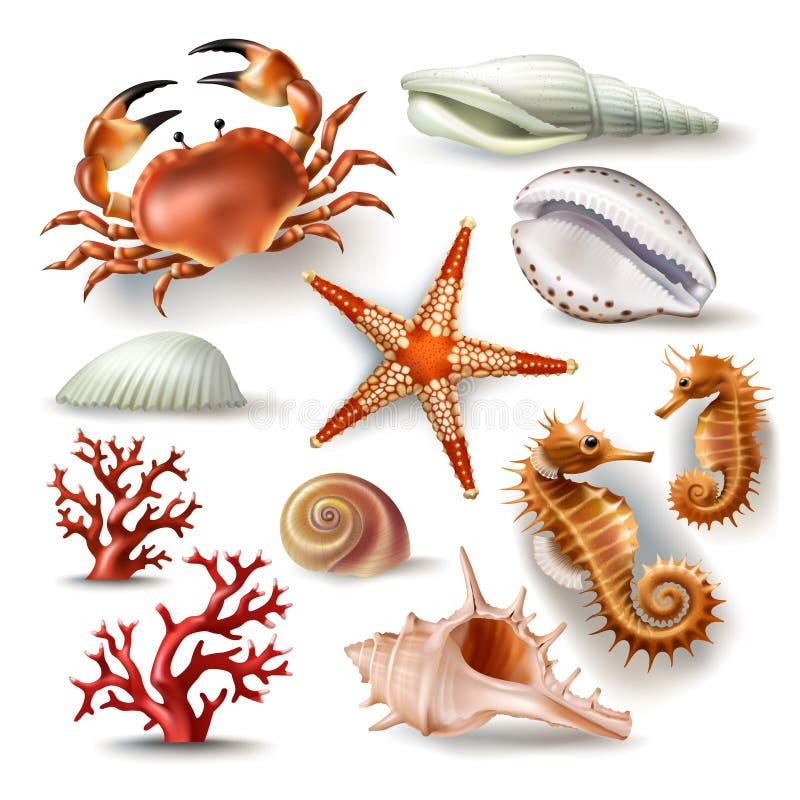 Uppsättning av den vektorillustrationsnäckskal, korall, krabban och sjöstjärnan vektor illustrationer