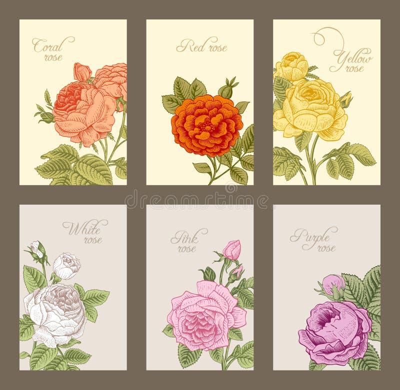 Uppsättning av den vertikala etiketten för tappning royaltyfri illustrationer