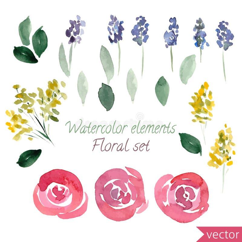 Uppsättning av det vattenfärgrosblommor och bladet Vektorsamling med sidor och blommor, handteckning stock illustrationer
