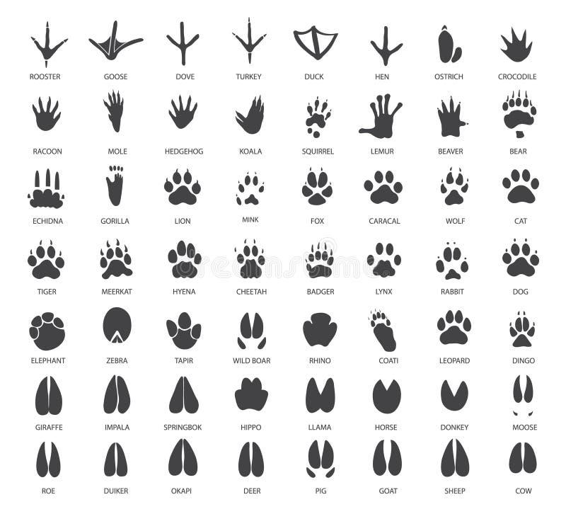 Uppsättning av djura spår stock illustrationer
