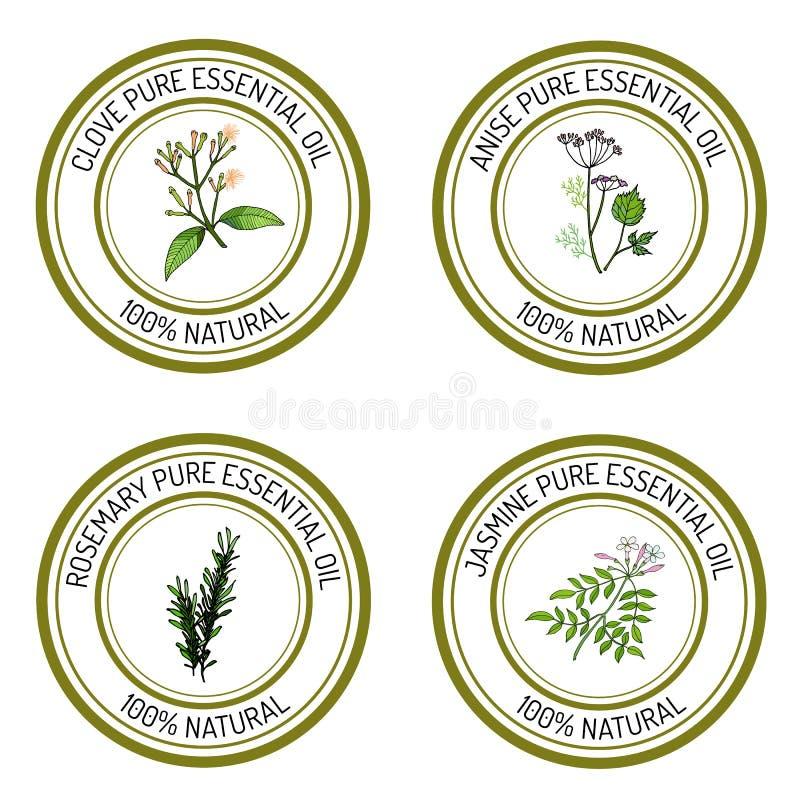 Uppsättning av etiketter för nödvändig olja: kryddnejlika; anis; rosmarin; jasmin stock illustrationer