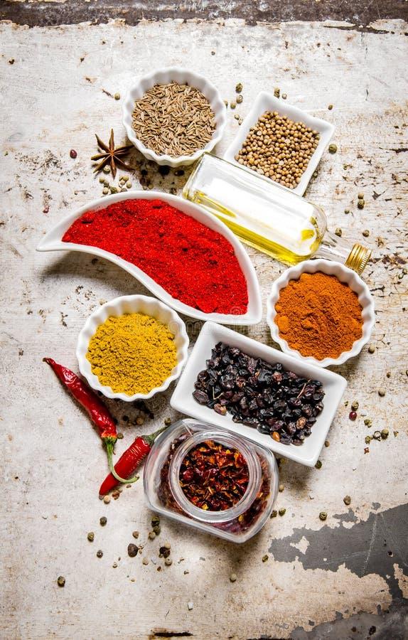 Uppsättning av färgrika kryddor och örter arkivbilder