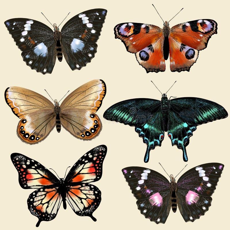 Uppsättning av färgrika realistiska fjärilar för vektor för design vektor illustrationer