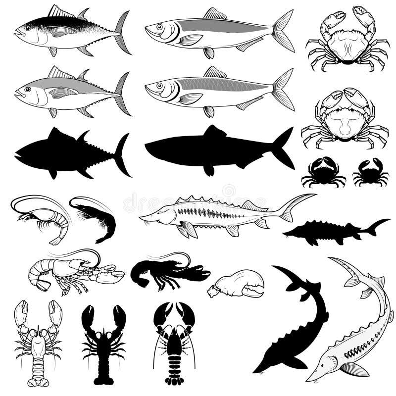 Uppsättning av fisken, krabbor, räkor, hummer den lätta designen redigerar elementet till vektorn royaltyfri illustrationer