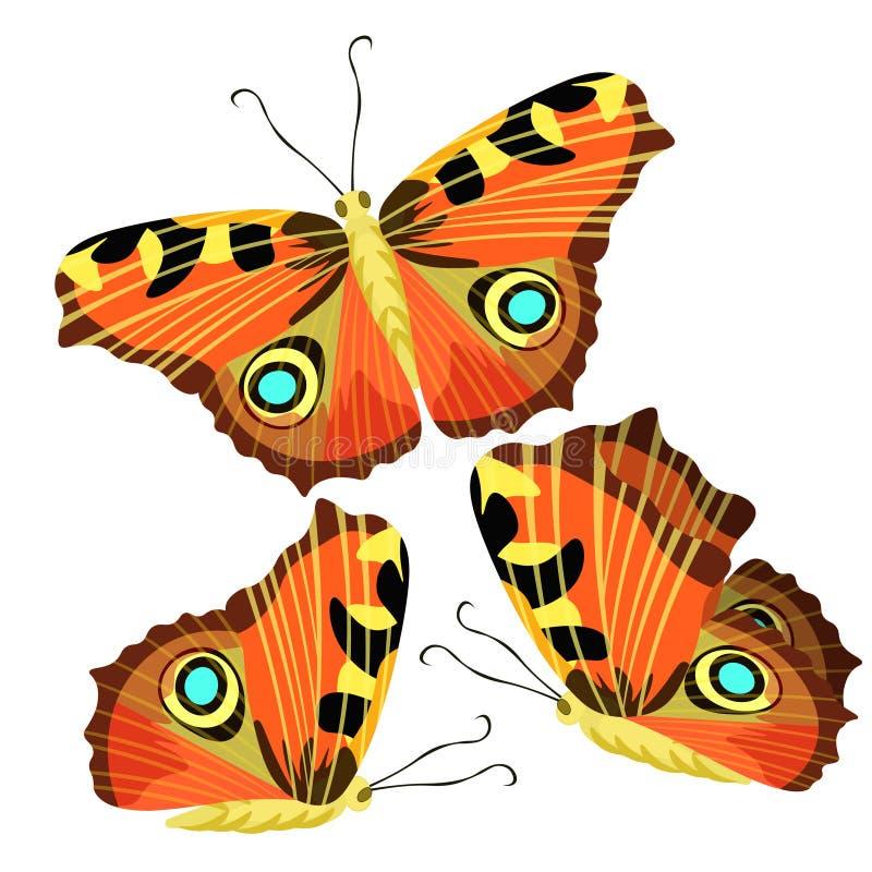 Uppsättning av fjärilspåfågelögat också vektor för coreldrawillustration vektor illustrationer