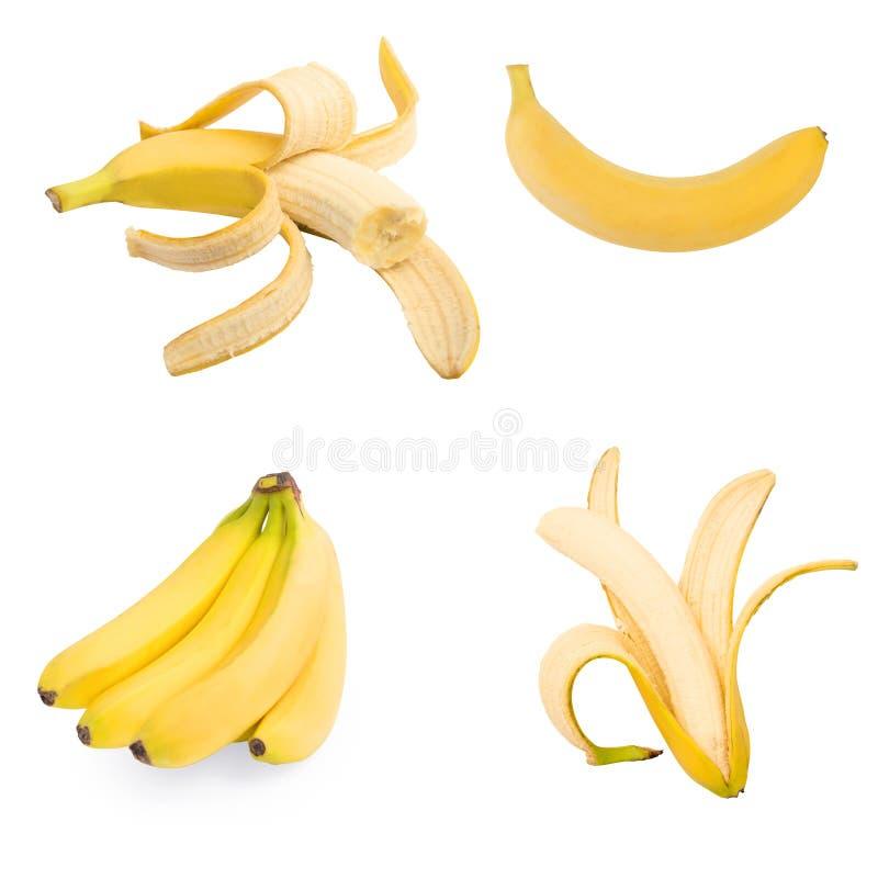 Uppsättning av fyra isolerade bananer royaltyfri fotografi