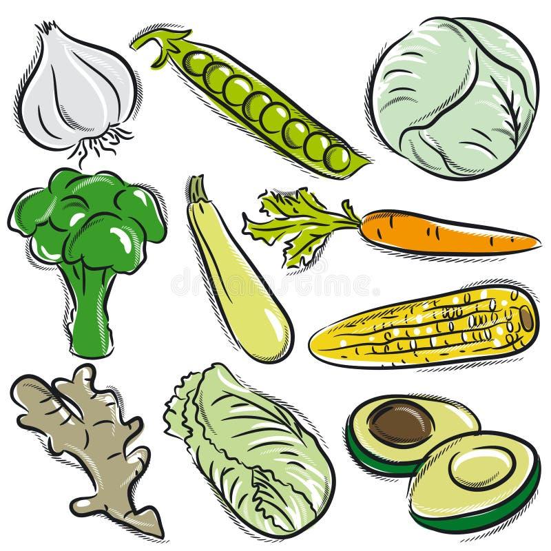 Uppsättning av grönsaken, vitlök, ärtor, kål stock illustrationer
