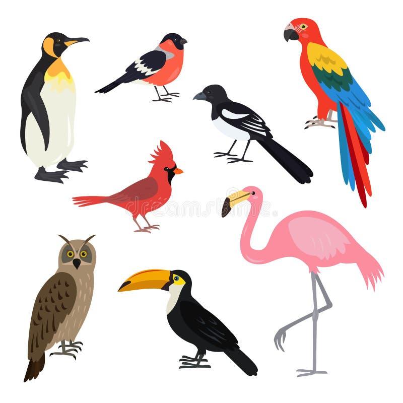 Uppsättning av gulliga fåglar för tecknad film på vit bakgrund vektor illustrationer